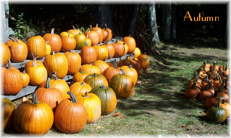Quotations and passages on autumn